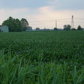 Polo Industriale di Tencara (Cremona): nuova occupazione o inutile consumo di territorio?