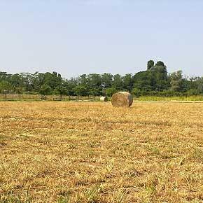 Non si ferma il trend di consumo di suolo in Piemonte
