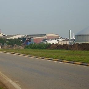 Provincia di Cremona prima in Italia per impianti a biogas: le rinnovabili e l'utilizzo del suolo agricolo