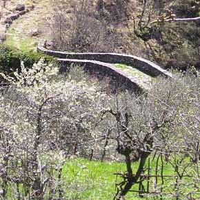 Appello contro impianto idroelettrico sul torrente Terchio