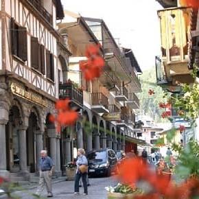 Limone Piemonte (Cn): il bosco di faggi sarà abbattuto per costruire garage