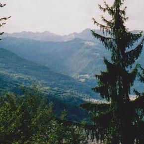 Una promessa di non soggiorno per salvare il bosco tra Pinzolo e Madonna di Campiglio (TN)