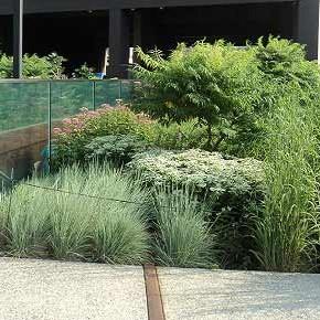 Sempre più verde in città, meglio se sostenibile