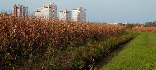 Parco Agricolo Sud Milano (Foto di Stefano Trezzi, da Wikimedia Commons)