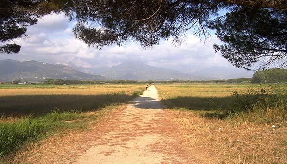 La tenuta di Marinella (fonte: Wikipedia)