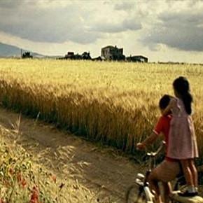 """L'eolico selvaggio mortifica paesaggi e natura del film """"Io non ho paura"""""""