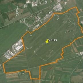 Il sito di interesse comunitario dell'aeroporto di Campoformido (Udine) minacciato da una colata di asfalto