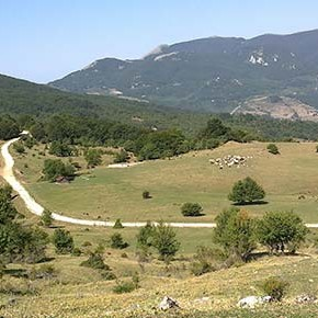 Caldarosa (Basilicata): un paradiso condannato dalle trivelle dell'Eni, salviamolo!