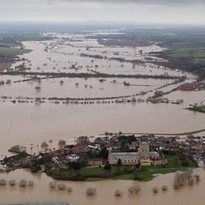 Alluvioni: la soluzione è piantare più alberi