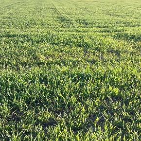 Lombardia: una necessaria revisione del governo del territorio per tutelare la risorsa suolo