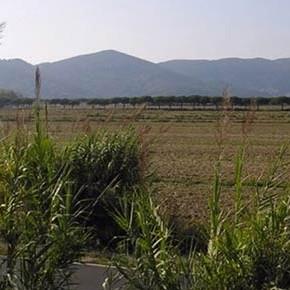 7 campi di calcio con alloggi: il possibile destino dell'ultima campagna agricola in Liguria