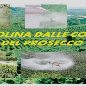 Conegliano - Valdobbiadene: le colline del Prosecco e dei pesticidi