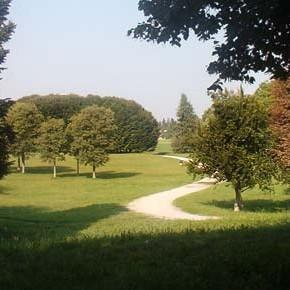 Un Coordinamento per la tutela del Verde a Torino
