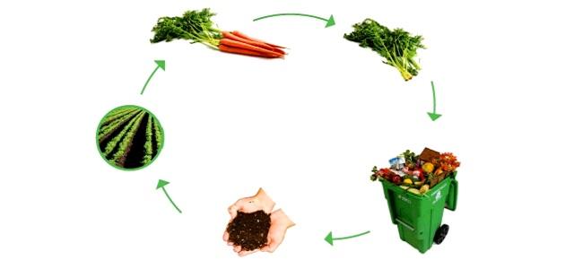 Cibo o rifiuto? Le sostanze organiche devono tornare a fertilizzare i suoli!