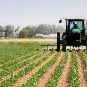 Salviamo il paesaggio e la nostra agricoltura