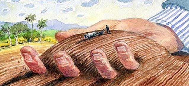 Le illusioni del progresso e dell'economia nascondono la fragilità del suolo, nostra unica fonte di vita