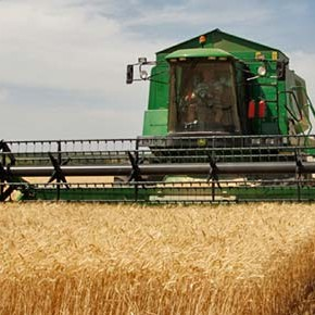 Agricoltura sostenibile: un ossimoro?