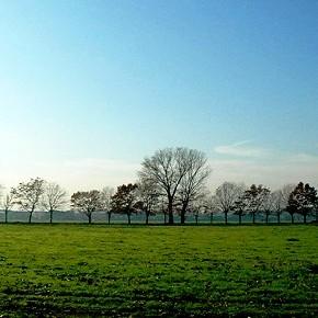 C'è un limite al consumo di suolo? Sì, il TAR boccia il Piano di Governo Territorio di Segrate (MI)