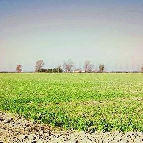 Consumo di suolo: in cerca di una legge efficace, ma le istituzioni non sembrano comprendere la gravità della situazione