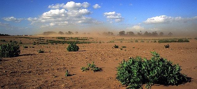 La Terra ha perduto un terzo del suolo coltivabile negli ultimi 40 anni