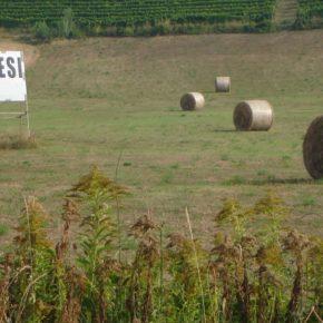 La Regione Piemonte disattende le sue stesse norme sul consumo di suolo