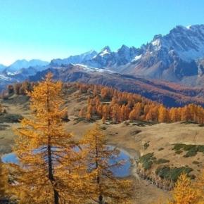 Salviamo l'Alpe Devero! Basta costruire impianti: più natura per tutti