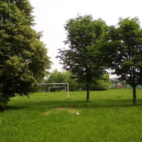 Salviamo l'area verde di Corso Piemonte a Settimo Torinese