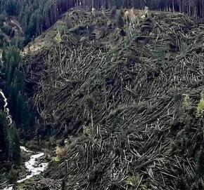 Urgente un Piano  regionale per salvare montagna, boschi e fiumi