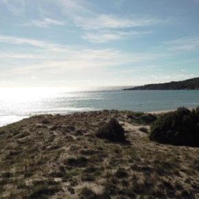 """La campagna """"Salviamo insieme dune e spiaggia di Chia"""", obiettivi e primi risultati"""
