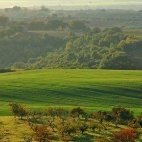 Agro romano, salviamo il paesaggio di Pasolini. Facciamolo diventare patrimonio Unesco