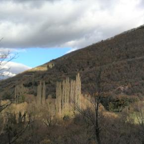 Proteggiamo le foreste! Creiamo in Umbria la prima Oasi Naturale del Fondo Forestale Italiano