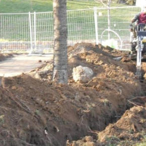 Non cemento ma alberi nel Giardino dei Giusti