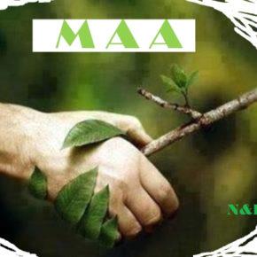 Manifesto per l'Anima e l'Ambiente (MAA)
