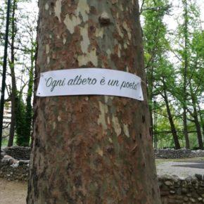 Torino: letture e musica al Parco Michelotti