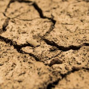 Giornata desertificazione e siccità, a rischio 1/5 dell'Italia