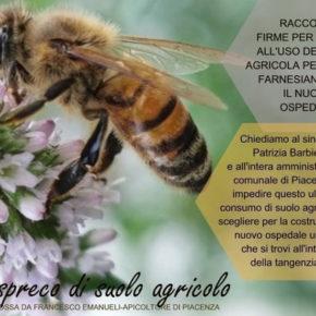 Salviamo le api dell'area agricolo-naturalistica Farnesiana 6 a Piacenza