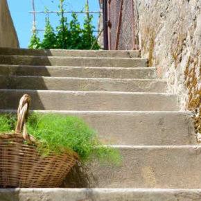 Il caso Cafaggio1 nella Valle del Chioma e la gestione degli immobili nel territorio dei Monti Livornesi