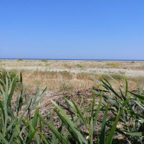 Stop al Jova Beach Tour sulla spiaggia di Roccella Jonica, si trovi un sito alternativo