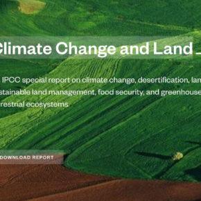Nuovo rapporto IPCC: il suolo risorsa determinante per il contrasto al cambiamento climatico