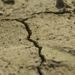 Pubblicati gli atti del webinar del Forum Salviamo il Paesaggio dedicato al Suolo, tenutosi il 24 settembre scorso