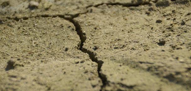A piedi nudi nel cemento: in un anno consumati 24 mq di suolo cittadino per ogni ettaro di aree verdi