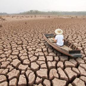 La risposta alla crisi ecoclimatica globale? Starnazzare a vuoto contro chi si batte per arginarla...