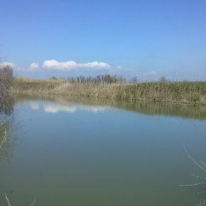 Litorale Romano: la Commissione approverà il piano di gestione della riserva statale