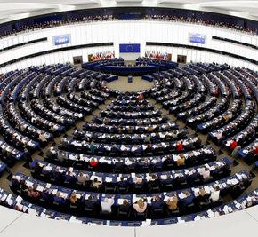 Informazioni dal nostro GSE-Gruppo Suolo Europa