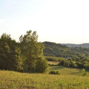 Il Rapporto sullo Stato del Capitale Naturale in Italia