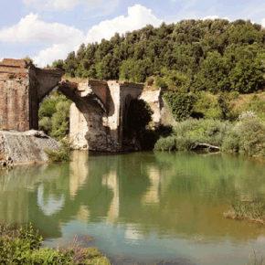Difendiamo il fiume Merse e le aree protette