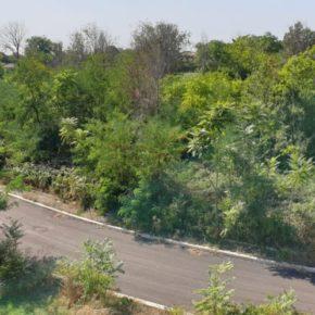 """Una strada minaccia già il nuovo """"Parco Pertini"""""""