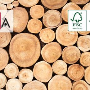Certificazione FSC in Italia: il report 2019