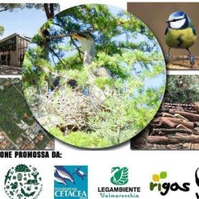 Salviamo l'Arboreto Cicchetti di Riccione