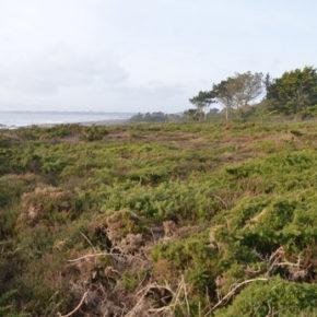 Terre al bio, il modello Finistére